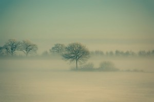 ubuntu13_04_wall_Winter Fog by Daniel Vesterskov_resize