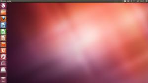 ubuntu13_desktop